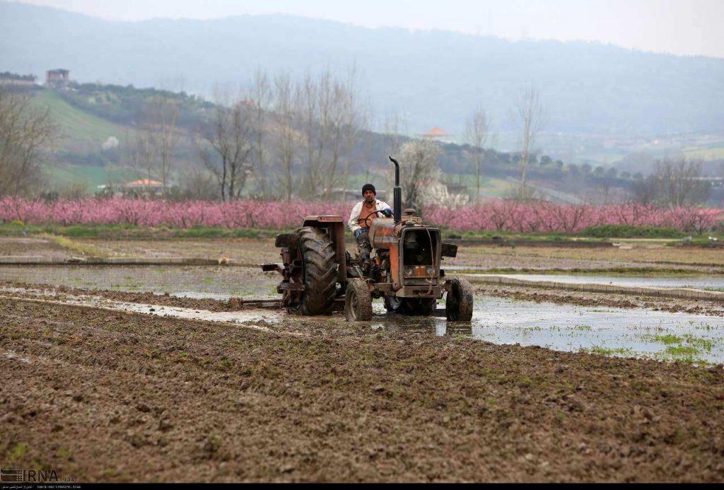 مکانیزاسیون ، مکانیزاسیون کشاورزی ، تسهیلات کشاورزی ، تسهیلات مکانیزاسیون کشاورزی ، وام کشاورزی ، وام مکانیزاسیون کشاورزی ، وام صندوق توسعه ملی ، وام بانک کشاورزی ، تسهیلات بانک کشاورزی ،
